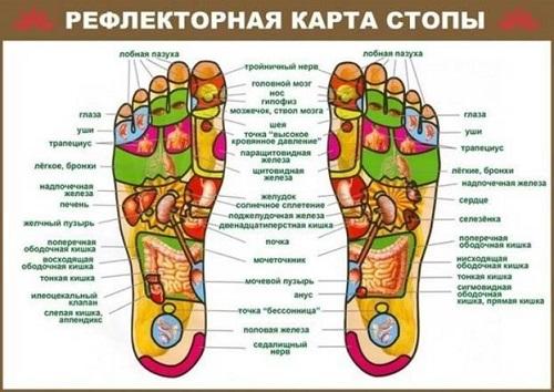 карта стопы