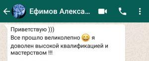 efimov_alexandr_otzyv2