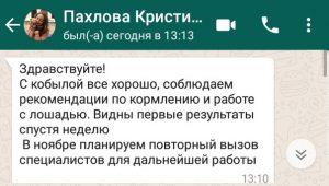 pakhlova_kristina_otzyv