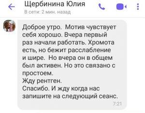 sherbinina_julia_otzyv