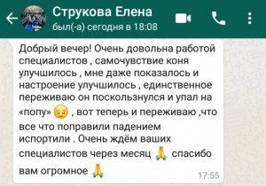 strukova_elena_otzyv